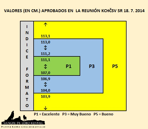 perro_lobo_checoslovaco_bonitation_index_formato_sangre_de_lobo_kennel_18072014
