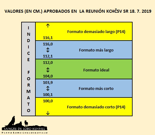 perro_lobo_checoslovaco_bonitation_index_formato_sangre_de_lobo_kennel_18072019